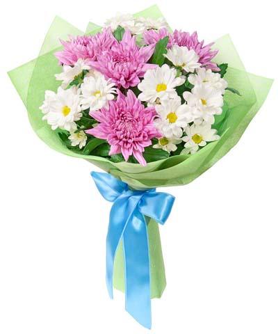 Доставка цветов сафоново смоленская обл купить консервированные цветы москва